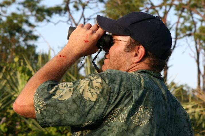 bob montanaro eagle looking at orca scrub copy