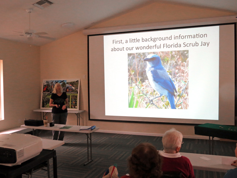 !!nancy-soucy-scrub-jay-banding-talk