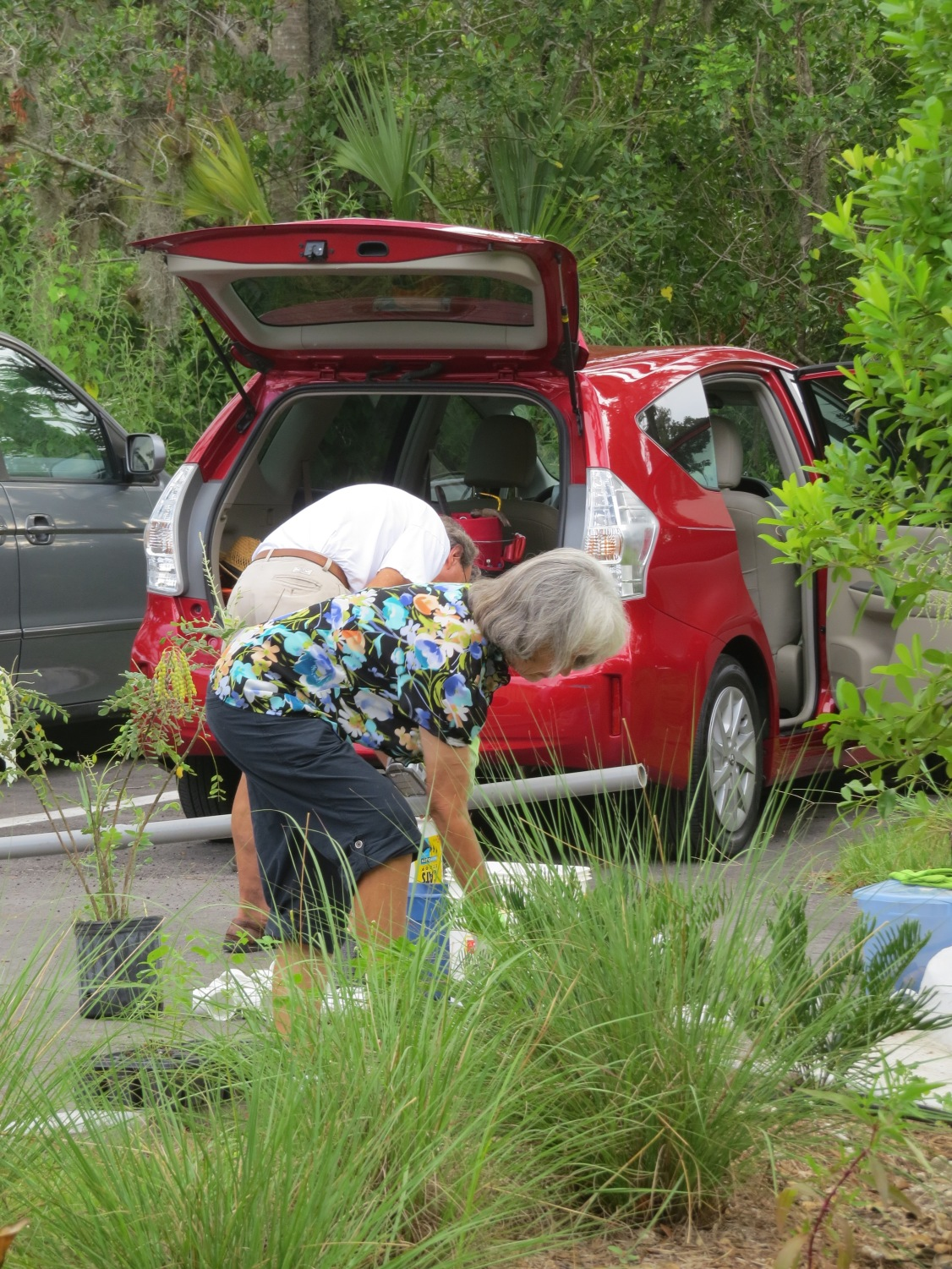 !ellie klebonis on 6-13-15 @ AH planting day copy