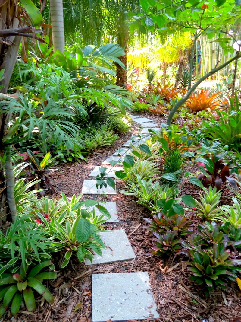 exotic bromeliads2 copy